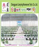 Popular up Mini Greenhouse Tree Planting Bag