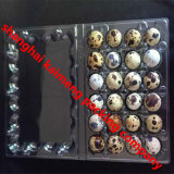 Food Grade Used Plastic Quail Egg Trays
