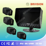 Rear View System with CCD Camera