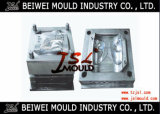 Plastic Car Tail Light Mould