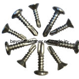 Screw Fastener Pan Head Self Drilling Screw Self Tapping Screw DIN7504 SUS Screw Taiwan Screw
