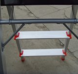 Household Aluminum Ladder (CQX1401)