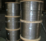 AISI 304; Not Magnetic Stainless Steel Wire Rope-6x19+PP-5.5mm