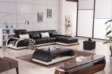 Furniture Leather Sofa Lounge Suite (a. L. 509)