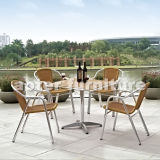 Outdoor Furniture (AT-8036)