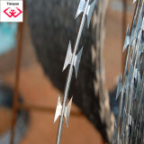 Durable Galvanized Razor Wire (TYH-008)