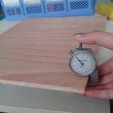 19mm Bintangor Faced Commercial Plywood Factory