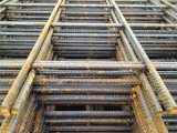 Welded Wire Mesh (YM004)