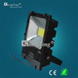 High Power LED Floodlight 50W/100W for Outdoor Lighting (IP66)