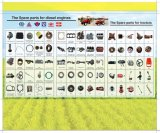 Spare Parts for Tractor ( Diesel Engine Parts, Fuel Injection Pump; Starter, Rebuild Kits, Front Axle, Drive Shaft etc.