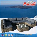 Outdoor Furniture /Garden Furniture Set /Patio Sofa Set