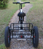 Intelligent Controller Lithium Battery Electric Tricycle