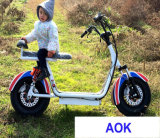 60V1000W Electric Motorbike, Electric Powered Motorcycle for Adult (EM-055)