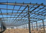 Light Gauge Framework for Steel Building for Warehouse Workshop