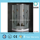 Hot Sale Colorful Acid Glass Shower Room (BLS-9607)