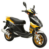 50cc Gasoline Scooter with EEC Certification (SP50QT-05)