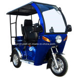 70/110cc Three Wheel Motorcycle/Tricycle for One Disabled (DTR-12)