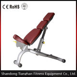Tz-6024 Gym Use Adjustable Gym Bench / Fitness Equipment Adjustable Bench for Wholesale