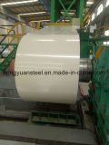 Ral9002 PPGL Color Coated Galvalume Steel Coil