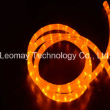 Y2 Colorful Flexible LED Rope Light LED Neon Rope Light