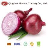 2017 Fresh Peeled Purple Onion