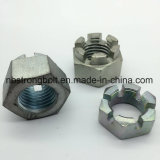 Hex Nut, Hex Slotted Nut DIN935