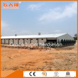 Modern Automatic Broiler Poultry Equipment with Free Design & Prefab Shed Construction