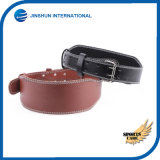 Fitness Belt Waist Belt Dead Lift&Squatting Belt Basketball Fitness Care&Training Sports Waist