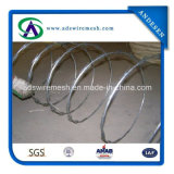 Hot Sale! ! ! Factory Cbt-65 Hot DIP Galvanized Concertina Razor Wire