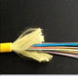 Gjpfjh 24 Core Indoor Single-Mode Distribution Fiber Optic Cable
