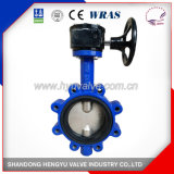 Lug Type Double Axis Butterfly Valve with Gear Operator with Blue Color