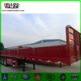 China 40feet 3axle Side Wall Semi Truck Trailer for Sale
