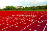 Eco-Friendly Heath Synthetic/Plastic Running Track