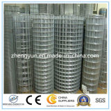Made in China Electro Galvanized Welded Wire Mesh