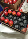 China Professional Manufacturer Fresh Apple Packing Protective Supermarket Display Poly Food Grade Plastic Liner for Exporting