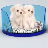 Lucite Acrylic Pet Dog Bed Btr-S1006