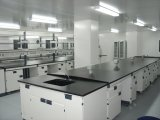 High Quality Stainless Steel Laboratory Workbench (PS-WB-004)