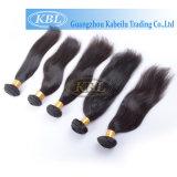 Kbl 100% Beauty Virgin Brazilian Hair Weaving (KBL-pH-ST)