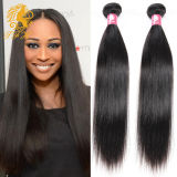 9A Grade Brazilian Virgin Human Hair Silky Straight (TFH-47C)