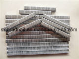 Factory Price Industrial Staples for Modern Furniture Making