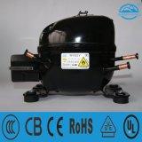 Walk in Cooler Compressor Wv52y