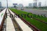 Artificial Grass Under Light Rail