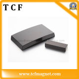 Permanent Rare Earth Neodymium/NdFeB Magnet with SGS