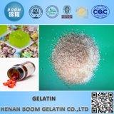 Factory Supply Food/Technical/Industrical Gelatum Granule