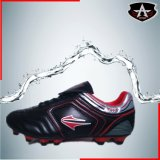 Soccer Shoes / New Design TPU Outdoor Soccer & Football Shoes (AFS 060)
