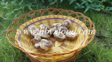 3kgs Tea Flower Shiitake Mushroom Dried