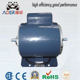 0.5 HP Single Phase Induction Electric Motor 2800 Rpm