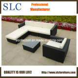 Rattan Furniture/Rattan Outdoor Furniture/Rattan Sofa (SC-B8850)