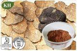 Black Truffle Extract, Tuber Melanosporum, CAS No.: 85085-76-3