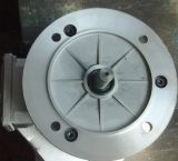 CE AC Induction Electrical Motor for Reducer (Y2 series)